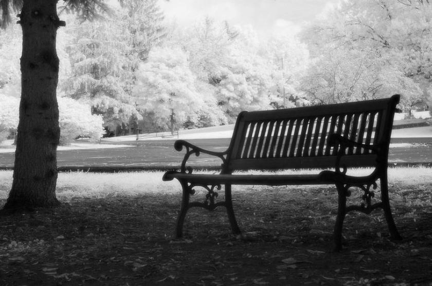 black-white-infrared-charleston-battery-park-bench-kathy-fornal